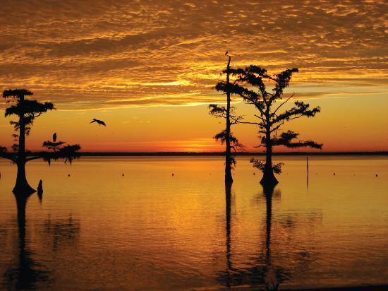 Morgan City, LA: Sunrise on Lake Palourde