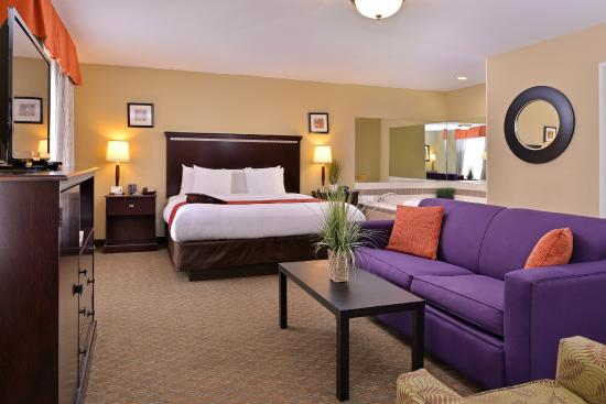 Comfort Suites Urbana Chaign University Area 93 1