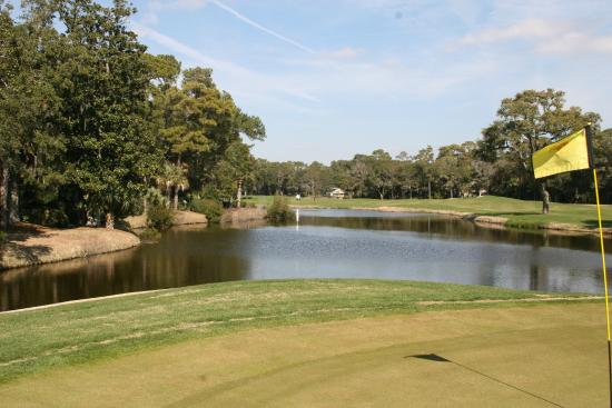 Turtle Point Golf Course: Turtle Point