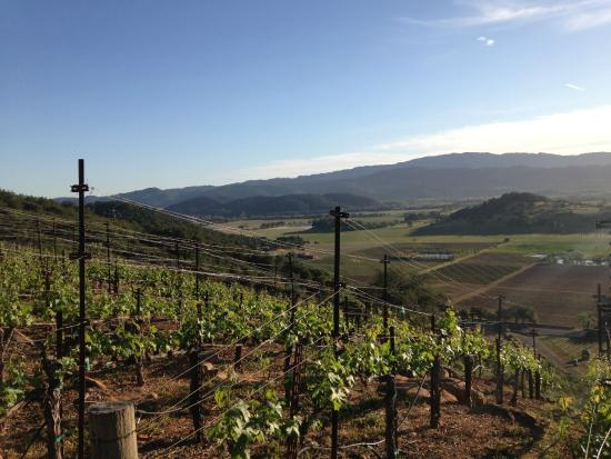 RAM Wine Country Tours