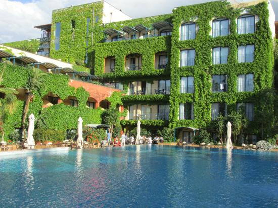 Flowersno picture of hotel caesar palace giardini naxos - Hotel caesar palace giardini naxos ...