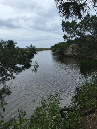 Bulow Creek State Park, Ormond Beach, FL