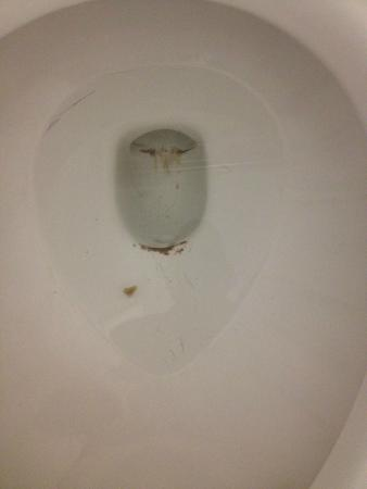 Econo Lodge: Room toilet that was not clean when we entered bathroom
