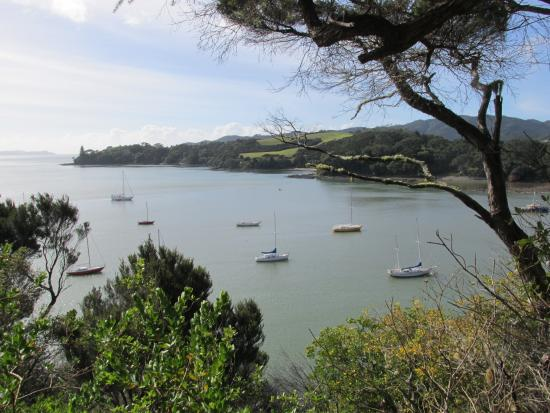 one of many beautiful views of mangonui harbour