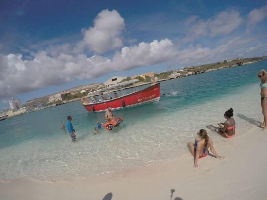 Calypso Trips & Tours