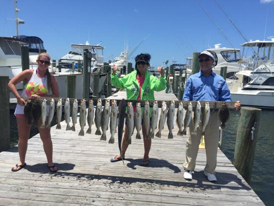 Southern Tide Charters: Caught our limit!
