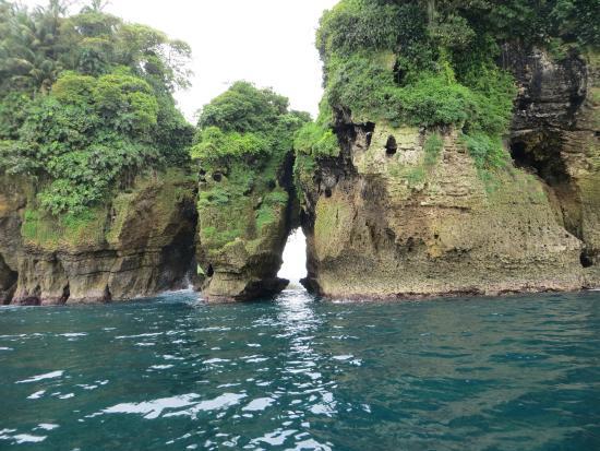 Île de Colon, Panama : Bird Island
