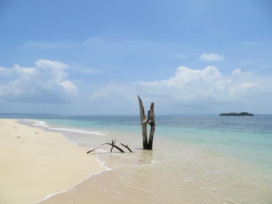Île de Colon, Panama : Zapatilla