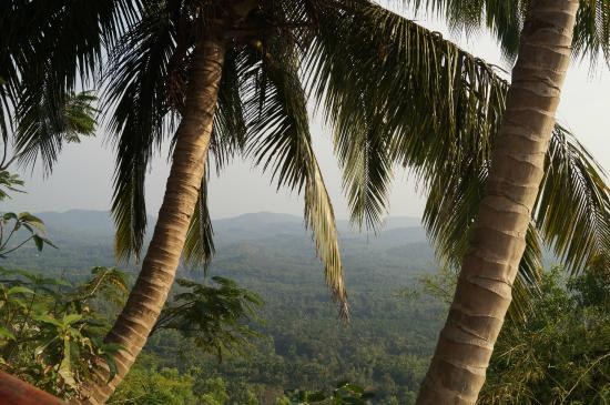 Bantwal, India: View from the top
