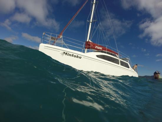 Mintaka - Picture of Cumberland Charter Yachts, Airlie Beach