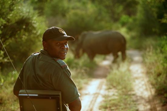 Garonga Safari Camp: Richard in tracking mode with a white rhino in the distance