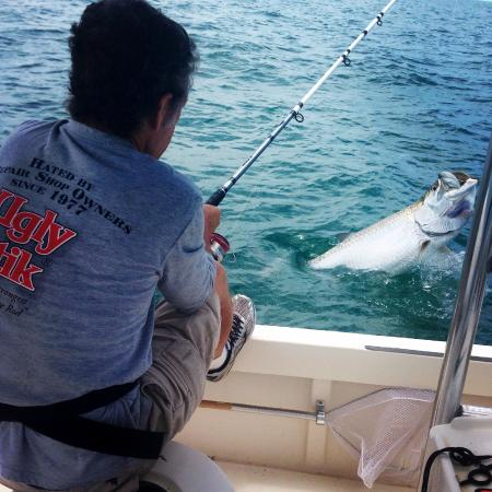 All the tarpon i could handle picture of tampa bay for Tampa bay fish