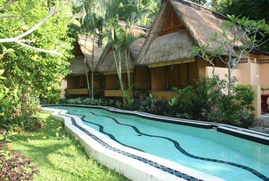 Shankari's Bali Retreat : Kundalini Swimming Pool