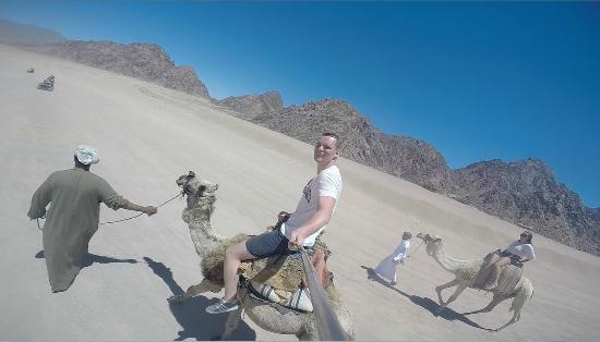 Sinai Safari Adventures: Camel Riding