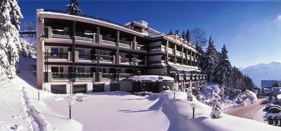 호텔 드 라 포레
