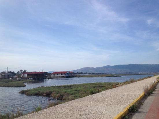 Mesolongion, Greece: Πεζόδρομος - ποδηλατόδρομος Μεσολογγίου
