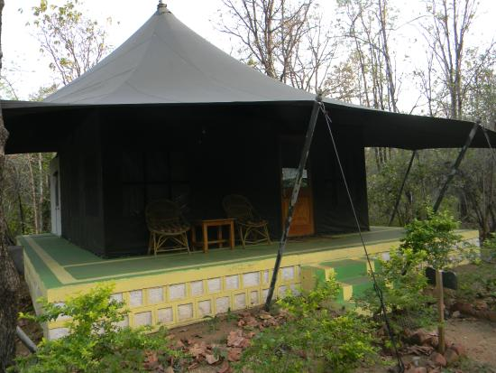 Pench Jungle C& Airconditioned tents & Airconditioned tents - Picture of Pench Jungle Camp Kohka ...