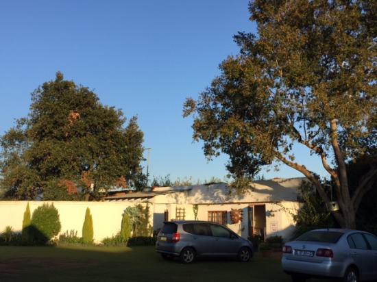 Blue Mango Lodge: Morning athmosphere!
