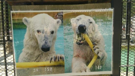 Himeji City Zoo: 姫路市立動物園