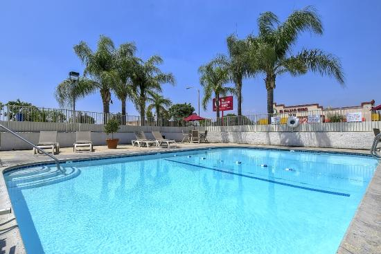 motel pool Best phoenix hotels with a swimming pool on tripadvisor: find 14,408 traveler reviews, 3,996 candid photos, and prices for 30 hotels with a swimming pool in phoenix, arizona, united states.