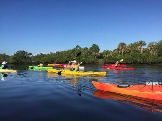 ‪‪Estero‬, فلوريدا: Estero River Kayak Tour‬