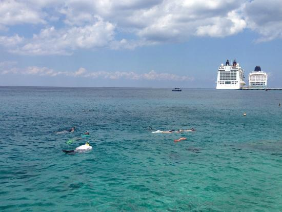 El Cantil Condo Resort: Great snorkeling right off the pier at the condo