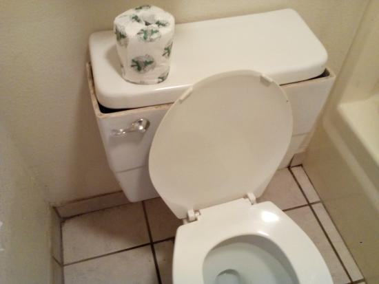 Americas Best Value Inn Nashville North / Goodlettsville : toilet