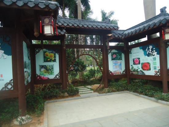 Jinhuacha Park: Jin Hua Cha Park - 1