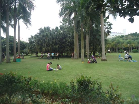 Jinhuacha Park: Jin Hua Cha Park - 2