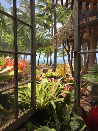 Paia, Χαβάη: View from our table