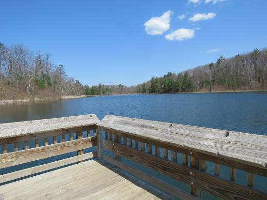 Grebe Lake Handi capped accessable fishing dock - Picture of