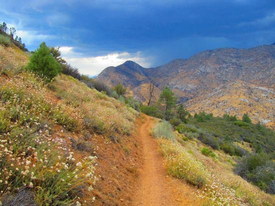 Cannell Trail: trail