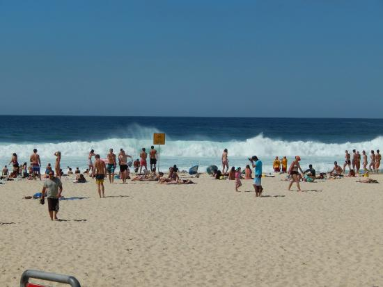 Bondi to Coogee Beach Coastal Walk: coastwalk