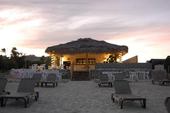 El Gecko Beach Club