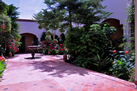 Riad Bledna : patio