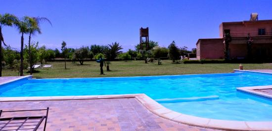 Riad Bledna : piscine & jardin