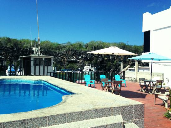 Hotel Castro : Swimming pool and Bay view