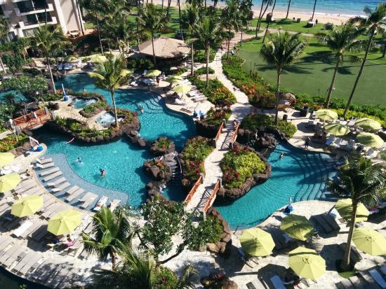 Hyatt Residence Club Maui Ka Anapali Beach That S Quite A Pool Down There