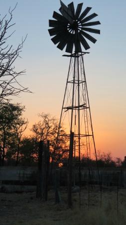 Vreugde Guest Farm: A sunset walk around the farm