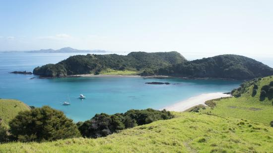 Bay of Islands, نيوزيلندا: the island from top