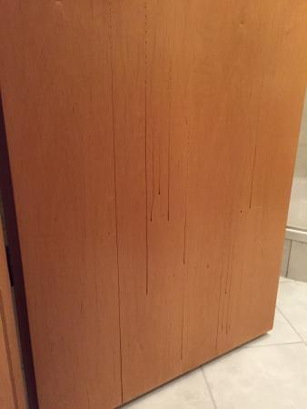 Hotel Circle Inn: Marks on bathroom door