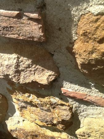 Zampugna Agriturismo: The villa is infested with ants