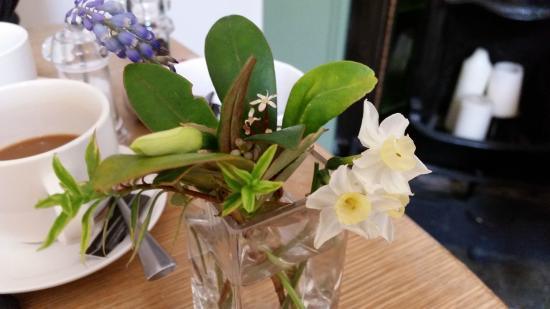 Fresh Plants And Flowers On The Dining Table Picture Of