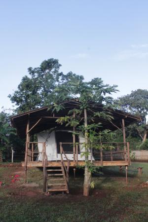 Mzuzu, Malaui: tented chalets