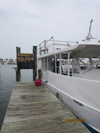 Kohootz Dolphin Encounters: The boat