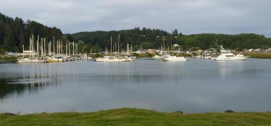 Winchester Bay RV Resort: Marina view from site 102