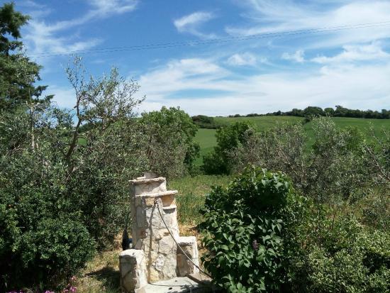 Agriturismo La Locandiera: panorama