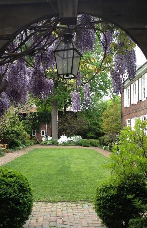Powel House: Powel Garden