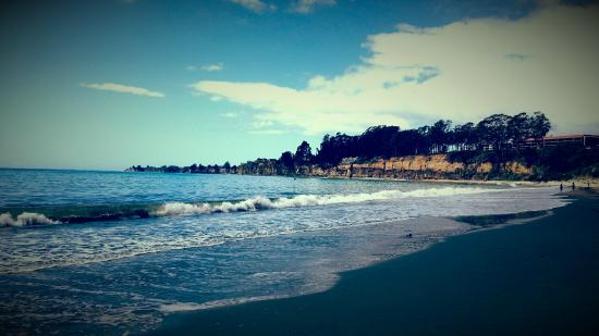 New Brighton State Beach : The beach