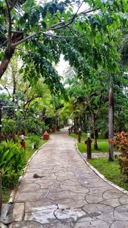 The Green Beach Resort: Garden view